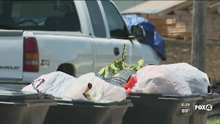 Local agencies join efforts to pick up Cape Coral trash