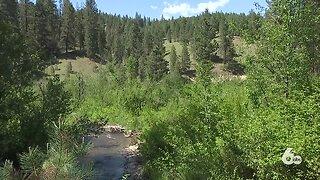 Boise National Forest hiring seasonal employees