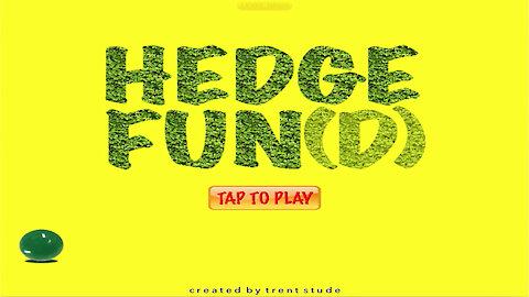 Hedge Fun(d) iPad Game