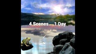 ' 4 Scenes...1 Day '