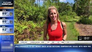 Walking Club: Exploring Key Vista Nature Park