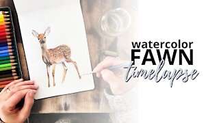Timelapse Watercolor Painting of a Fawn