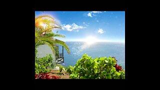 Canary Islands Paradise