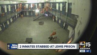 Inmate stabbings at Lewis Prison