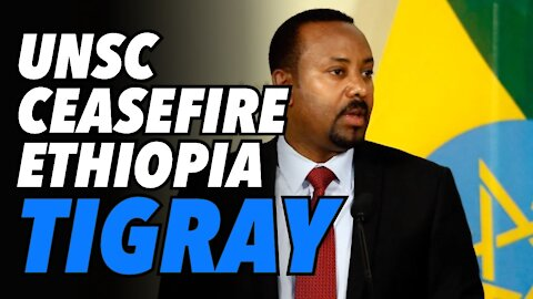 TPLF shocks Ethiopian gov. with decisive military win. UNSC calls for ceasefire
