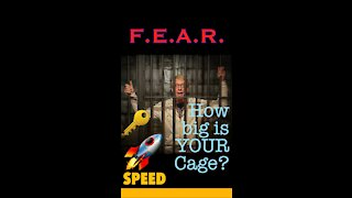 How big is YOUR cage? What fears are holding you back?