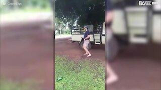 Footloose: danser comme s'il n'y avait pas de lendemain