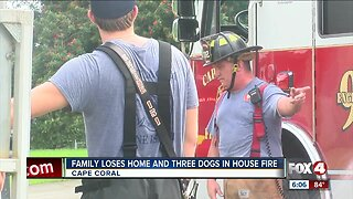 Three dogs die in Cape Coral house fire