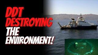 Environmental Disaster off Coast of California. DDT Dumping Ground Destroying Marine Animals.
