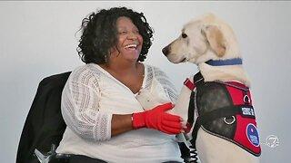Freedom Service Dogs - Volunteer!