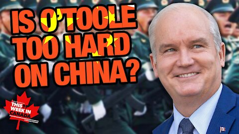 Are the Conservatives too hard on China?