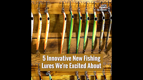 5 Innovative New Fishing Lures We're Excited About