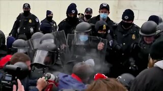 WNY experts react to riots in the Capitol