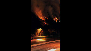Wild Fire *