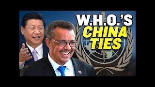 World Health Organization Investigators Tied to China?