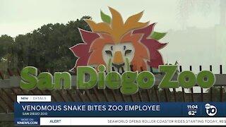 Venomous snake bites zoo employee