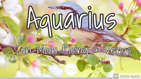 """Aquarius March """"Amazing opportunity """""""