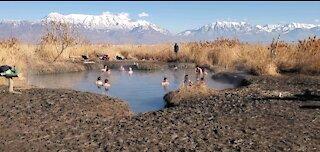 Natural Hot Springs ♨️ Utah Lake - Winter 2021