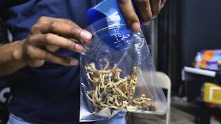 Study Finds Magic Mushrooms May Help Fight Depression