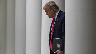 Trump Halts World Health Organization Funding Over COVID-19 Response