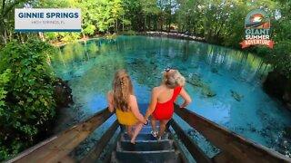 Giant Summer Adventure: Ginnie Springs in High Springs, Florida