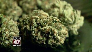 Recreational marijuana forum Monday