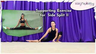 Free Side Split Supporting Exercise II