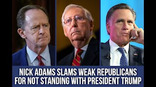 Nick Adams SLAMS Weak Republicans for Not Standing With President Trump