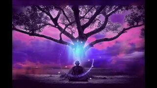 Relaxing Music, Meditation Music, Soothing Music, Relaxation Music