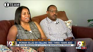 Can family find justice after tree killed mom?
