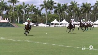 Gay Polo League holds final match of the season in Wellington