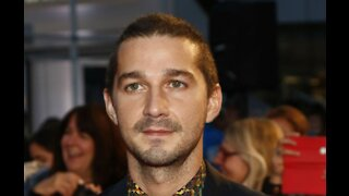 Shia LaBeouf has been charged with battery and petty theft