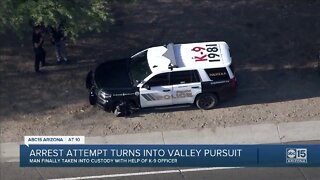 Arrest attempt turns into crash