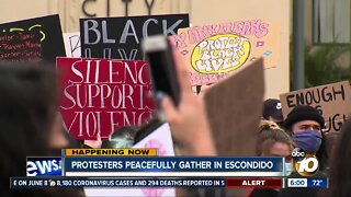 Demonstrators gather in Escondido for protest