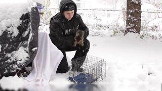Michigan Humane Society Telethon – Rescued Animals