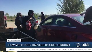 How much food Harvesters goes through