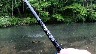 Wet & Wild Trout Fishing Part 3