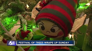 Family day takes over Festival of Trees