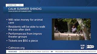 Calm Zoo kicks off Summer Shindig