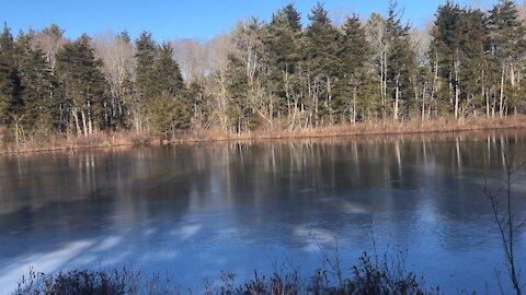 Exploring a hidden pond