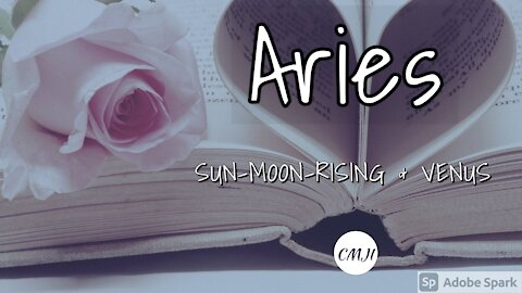 """ARIES """"THE SOULMATE"""""""