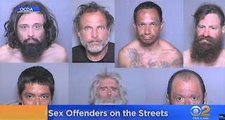 7 High-Risk Sex Offenders Released In Orange County, California