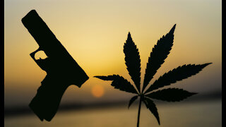 We CAN Stop Federal Gun Prohibition: State Marijuana Laws Show How
