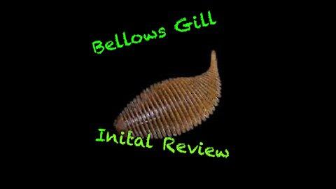Geecrack Bellows Gill Initial Review
