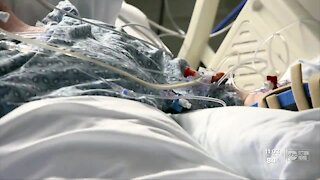 Surge in hospitalizations prompts Tampa Bay hospitals to bring back COVID-19 restrictions