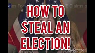 HOW TO STEAL AN ELECTION 2.0