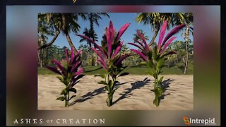 5 Things Ashes of Creation Should Take From Archeage