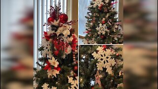 American Red Cross' annual 'Festival of Trees' fundraiser goes virtual