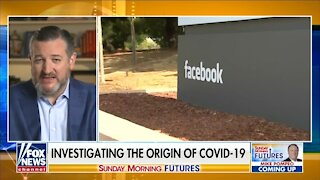 Cruz: Facebook Was Censoring COVID-19 Info On Behalf of the Government