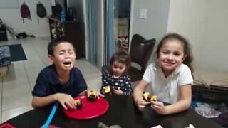 Little boy is sick of being the only brother in the house